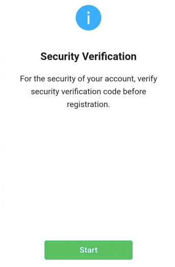 Security Verification